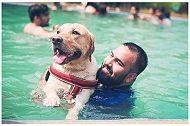 Beat the Summer Heat at Pet Fed's Pupper Pool Party!