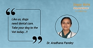 Dr. Aradhana Pandey, The Lady Behind The Paradise For Pet Lovers